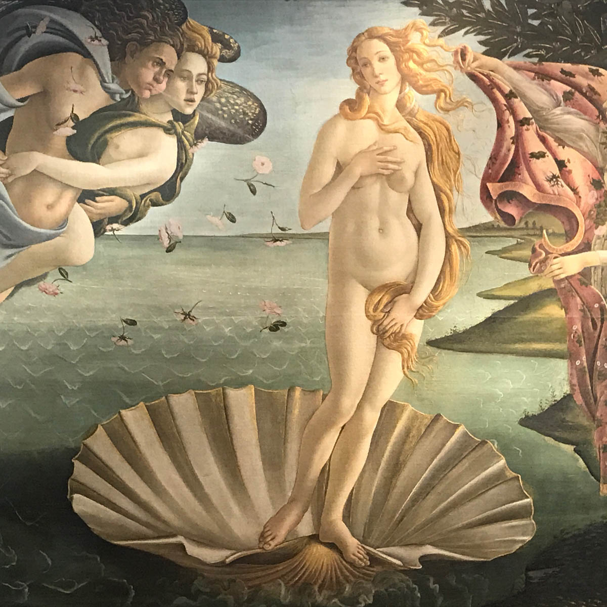 Botticelli's Birth of Venus (Uffizi Gallery)