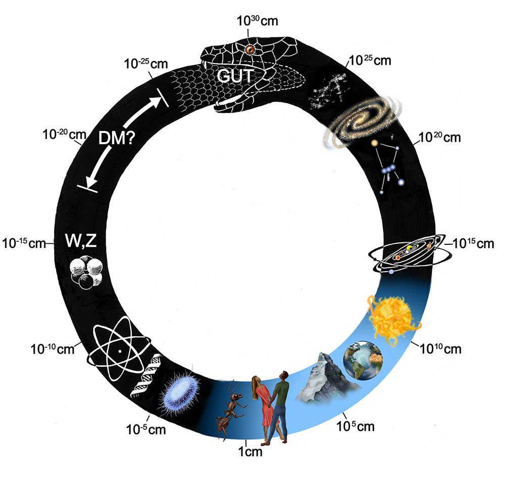 ouroboros and spacial scales picture